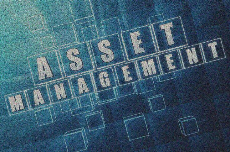 Asset Managent HedgeThink