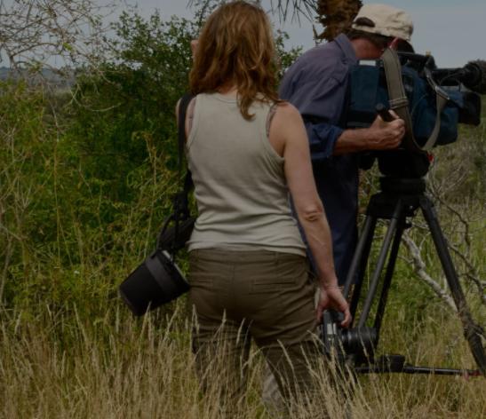 Film fund Creative Media Investments
