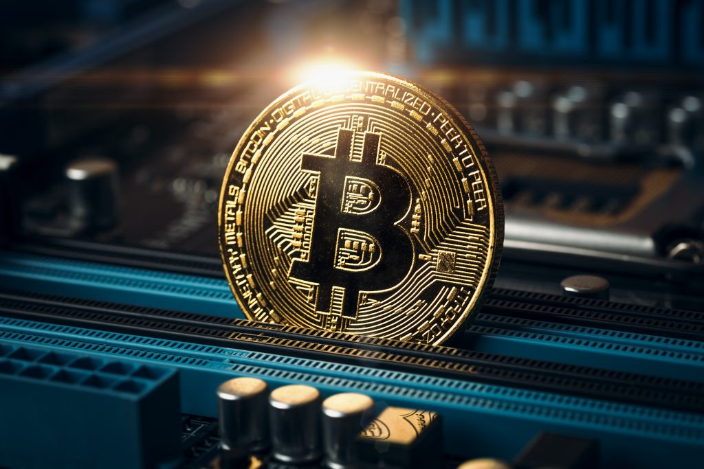 Insights on the Future of Cryptocurrency