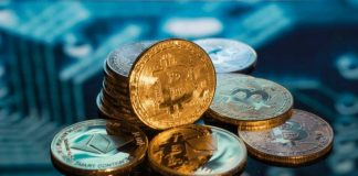 Hedge fund, cryptos, asset management